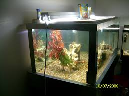 need opinion on comercial grade lobster tank purchase equipment