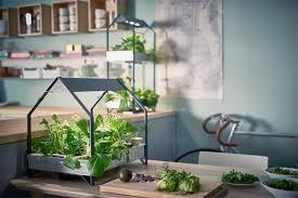Indoor Garden Kit No Muss No Fuss Indoor Gardening With Ikea U0027s New Hydroponic