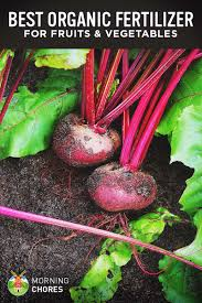 What Type Of Soil To Use For Vegetable Garden 6 Best Organic Fertilizer For Fruits And Vegetables Reviews