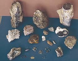 the gemhunter s guide to agate jasper agate jasper quartz