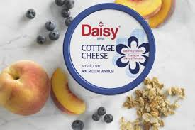 Cottage Cheese Daisy by Daisy Brand To Expand Ohio Dairy Facility Food Industry News