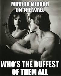 Schwarzenegger Meme - arnold schwarzenegger meme 22 wishmeme