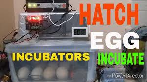 hwo to make homemade egg icubator temperature control small