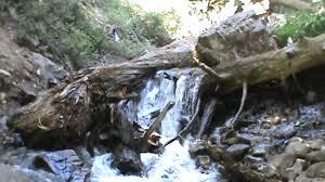 Utah nature activities images Adams canyon waterfall utah outdoor activities jpg