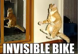 Invisible Cat Meme - invisible bike cat meme cat planet cat planet