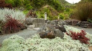 whangarei quarry gardens pictures view photos u0026 images of