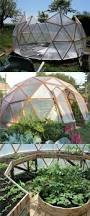 Backyard Greenhouse Diy 21 Diy Greenhouses With Great Tutorials Diy Greenhouse Cold