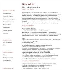 Executive Resume Template by Executive Resumes Templates 10 Executive Resume Templates Free