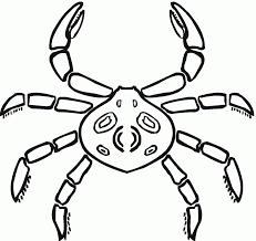 download coloring pages crab coloring pages crab coloring page
