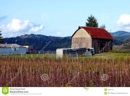 Barnhouse by Old Barn House Stock Image Image 13811671