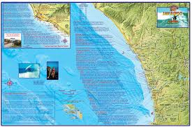 Utc Parking Map Amazon Com San Diego Surf Map Laminated Surfing Guide Poster By