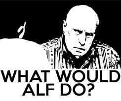Alf Stewart Meme - 13 best alf my hero images on pinterest hero heroes and