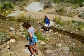 the anza borrego desert state park is a go to favorite u2013 the coast