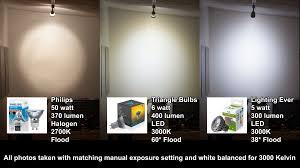amazon com customer reviews triangle bulbs t95031 6 6 pack