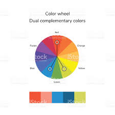 vector illustration of color circle infographics palette dual