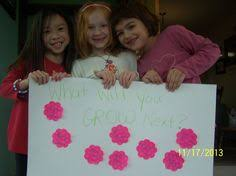 daisy flower garden journey session 3 flower daisy scouts and