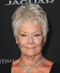 judi dench hairstyle front and back of head judi dench hairstyles in 2018