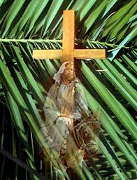 palm sunday crosses palm sunday clippesby st