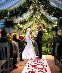 Wedding Venues In St Louis Mo The Conservatory Garden Wedding Venue St Louis Mo Wedding