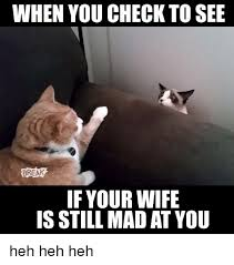 You Still Mad Meme - when you check to see break if your wife is still mad at you heh