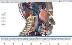 3d Human Anatomy Atlas Human Anatomy Atlas U2013 3d Anatomical Model Of The Human Body Apps