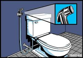 How Do You Dry After Using A Bidet How To Use A Hand Held Bidet Bidet Org