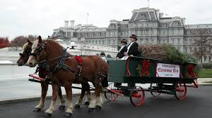 white house tree delivered on carriage