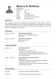 resume format template resume cv format templates docx for accountant exle