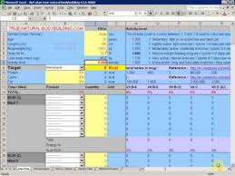 Meal Plan Excel Template How To A Diet Plan With Excel Demo Part 1