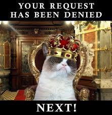 Grumpy Cat Coma Meme - grumpycat meme for more grumpy cat stuff gifts and meme visit