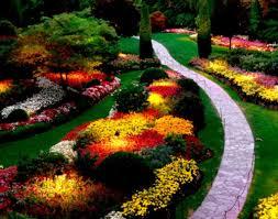 stunning best of back garden design ideas queensland the diy with
