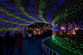 yogi bear christmas lights the best christmas light displays in every state austin trail of