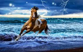 beautiful horses 334676 walldevil