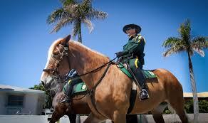 palm beach county sheriff u0027s office pbso