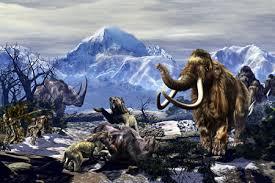 humans responsible killing wooly mammoth