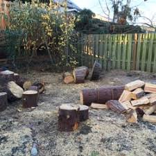 ls that look like trees tim s tree stump removal tree services troutdale or phone