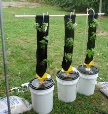 diy hydroponic garden images reverse search