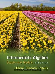 bittinger intermediate algebra graphs models 4th txtbk quadratic