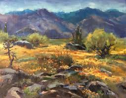 claudia verciani super bloom u2013 anza borrego desert