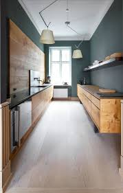 Modern Wooden Kitchen Designs Dark by Modern Kitchen With Sleek Walnut Cabinets And Dark Green Walls