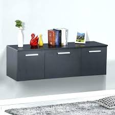 shallow storage cabinet with doors shallow storage cabinet with doors luxury shallow cabinet with doors