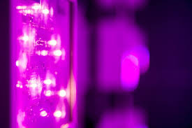 how efficient are led grow lights youtube