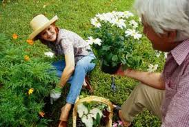 vegetable gardens mulch or use grass clippings home guides