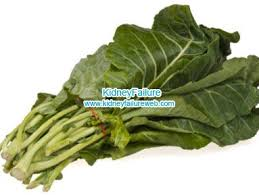 chronic kidney failure chronic renal failure diet food and