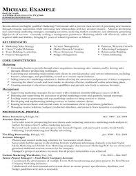 Free Sample Resume Templates Word Core Competencies Resume Examples Resume Example And Free Resume