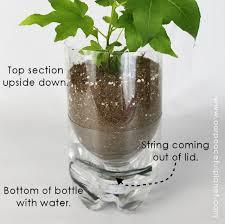 self watering planters diy bottle best 4k wallpapers
