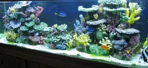 artificial coral reef aquarium decor for saltwater fish marine