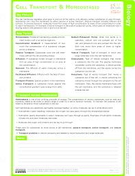 diffusion study aids biology ck 12 foundation