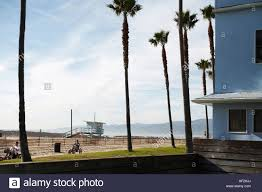 beach house overlooking palm trees and lifeguard tower venice
