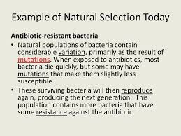 chapter 10 notes part ii the theory of natural selection ppt
